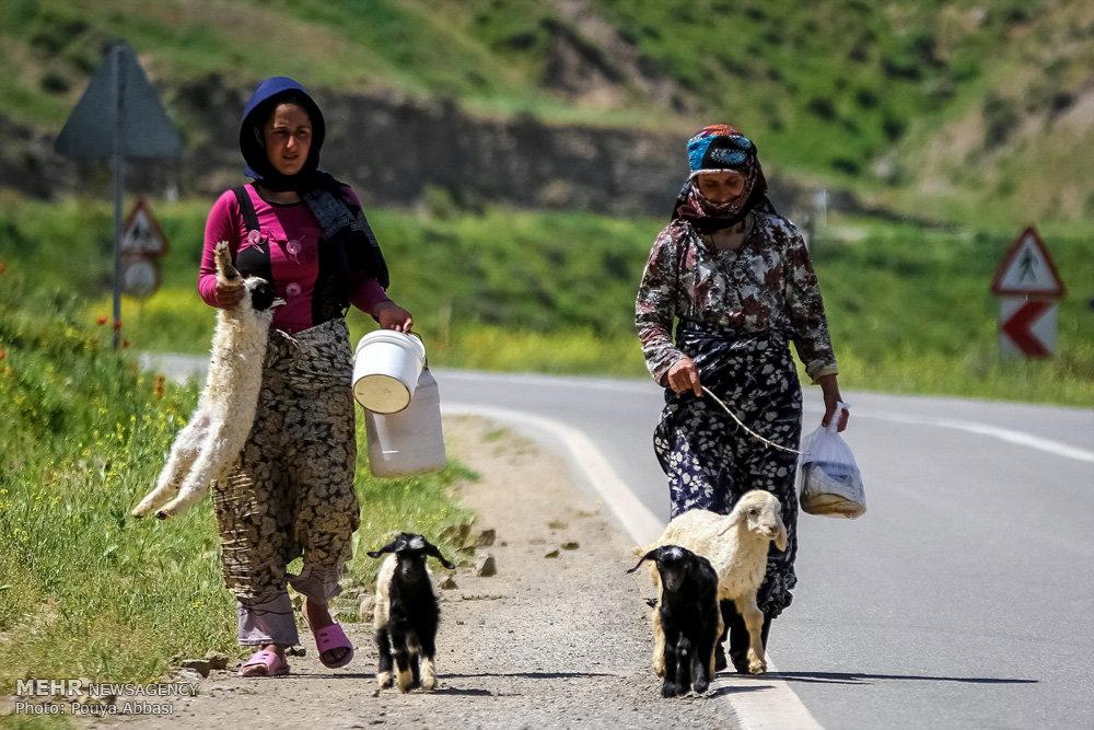 عشایر آذربایجان