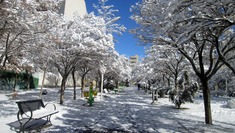 پایان زمستان
