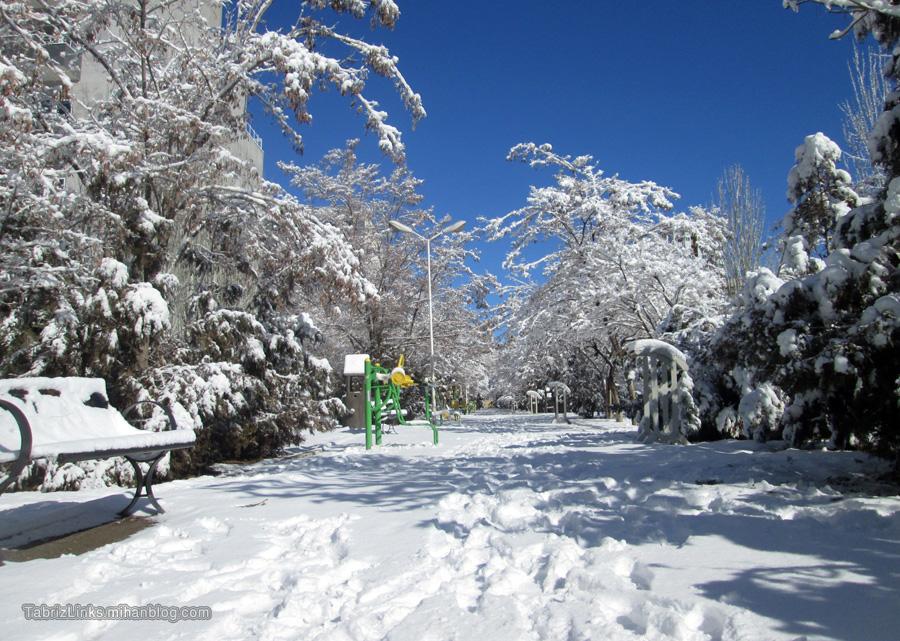 برف رویایی
