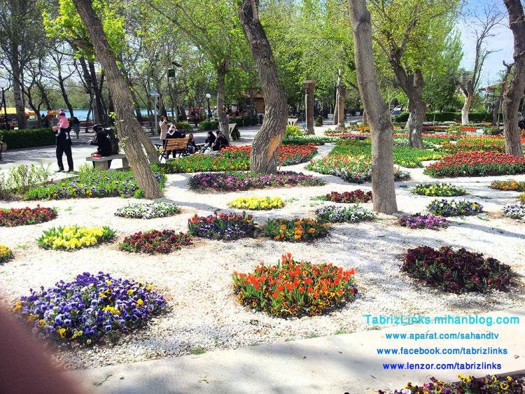 سازمان پارکها و فضای سبز تبریز