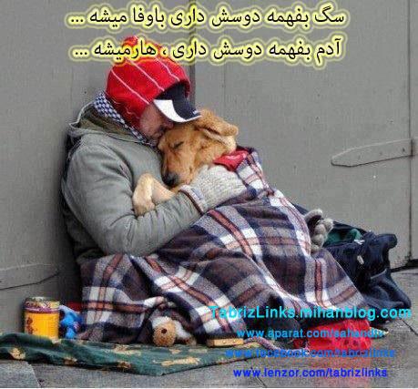 وفاداری حیوانات