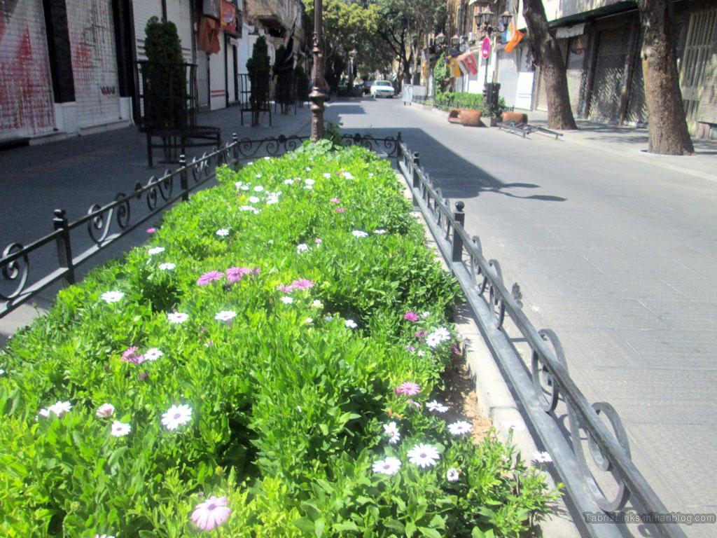 باغچه تبریز